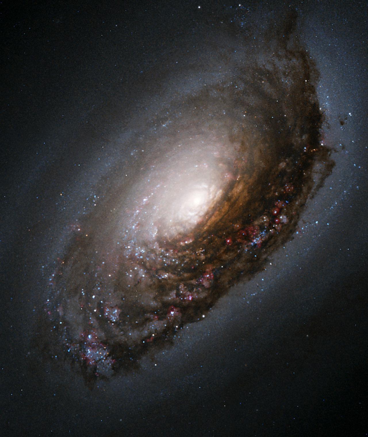 галактика М 64 в созвездии Волосы Вероники