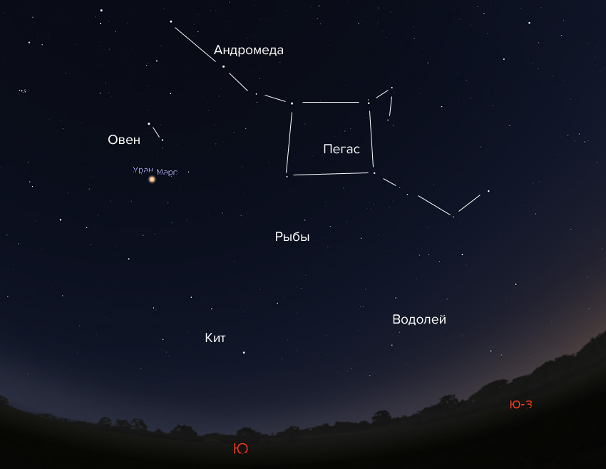 Пегас и Андромеда в январе